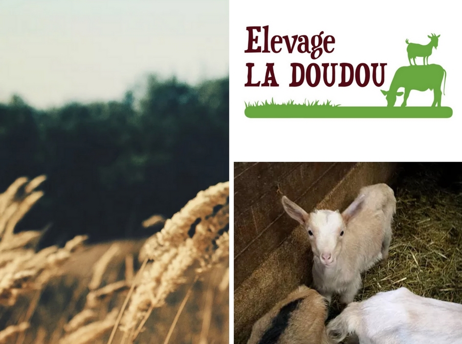 Images courtesy of Evelage La Doudou