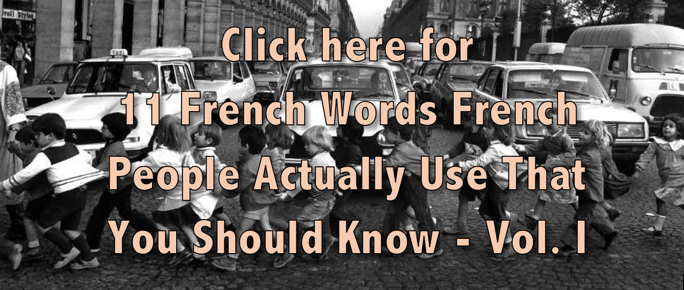 french words vol 1
