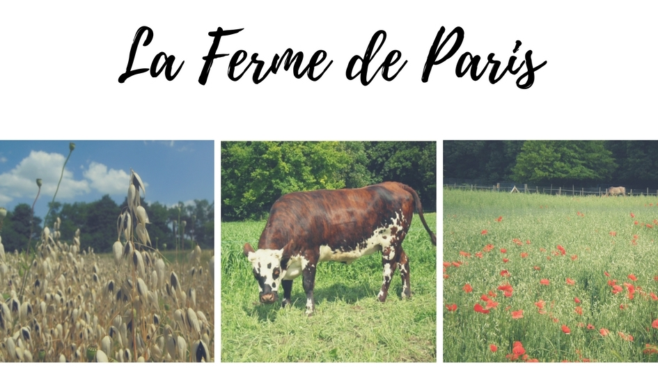 Images of La Ferme de Paris